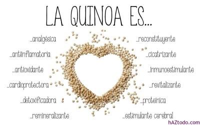 Qué es la Quinoa o Quinua?