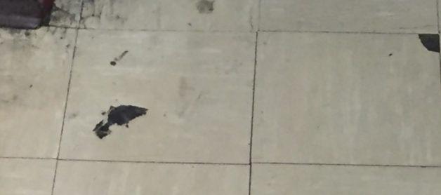 Floor Mastic Contains Asbestos