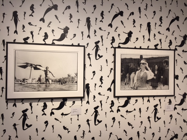 Some of Jean Pigozzi's photographs on display