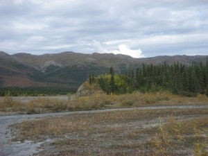 The hill in the foreground is where some of the previous Teklanika River pictures were taken from.