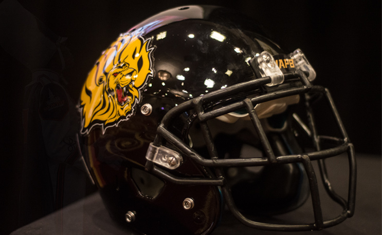 University of Arkansas at Pine Bluff adds to football ...