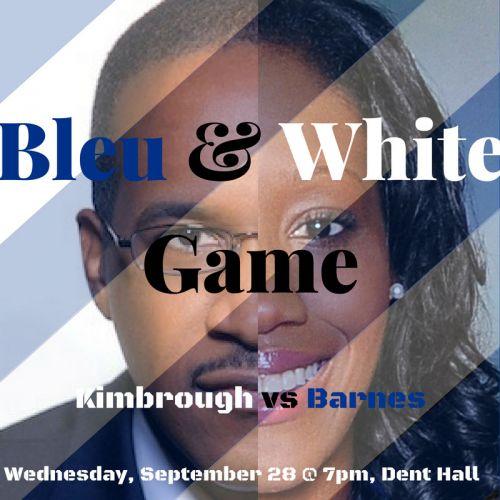 bleu__white_game