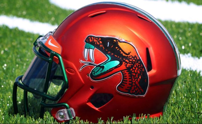 Florida A&M helmet