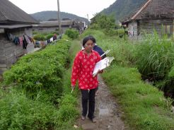 Research assistants (North Sumatra, 2004)