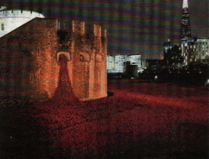 The poppy display at the Tower of London