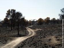 Incendio en Hellín