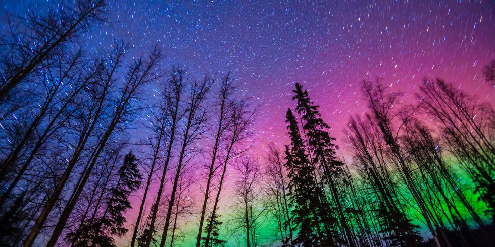 Northern Lights North Carolina