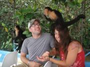mangrove monkey boat tour, monkeys, bananas, furry little friends