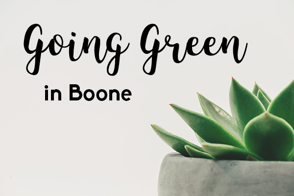Going Green in Boone