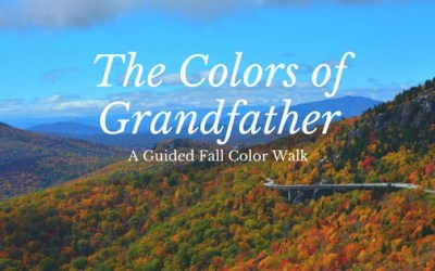 The Colors of Grandfather