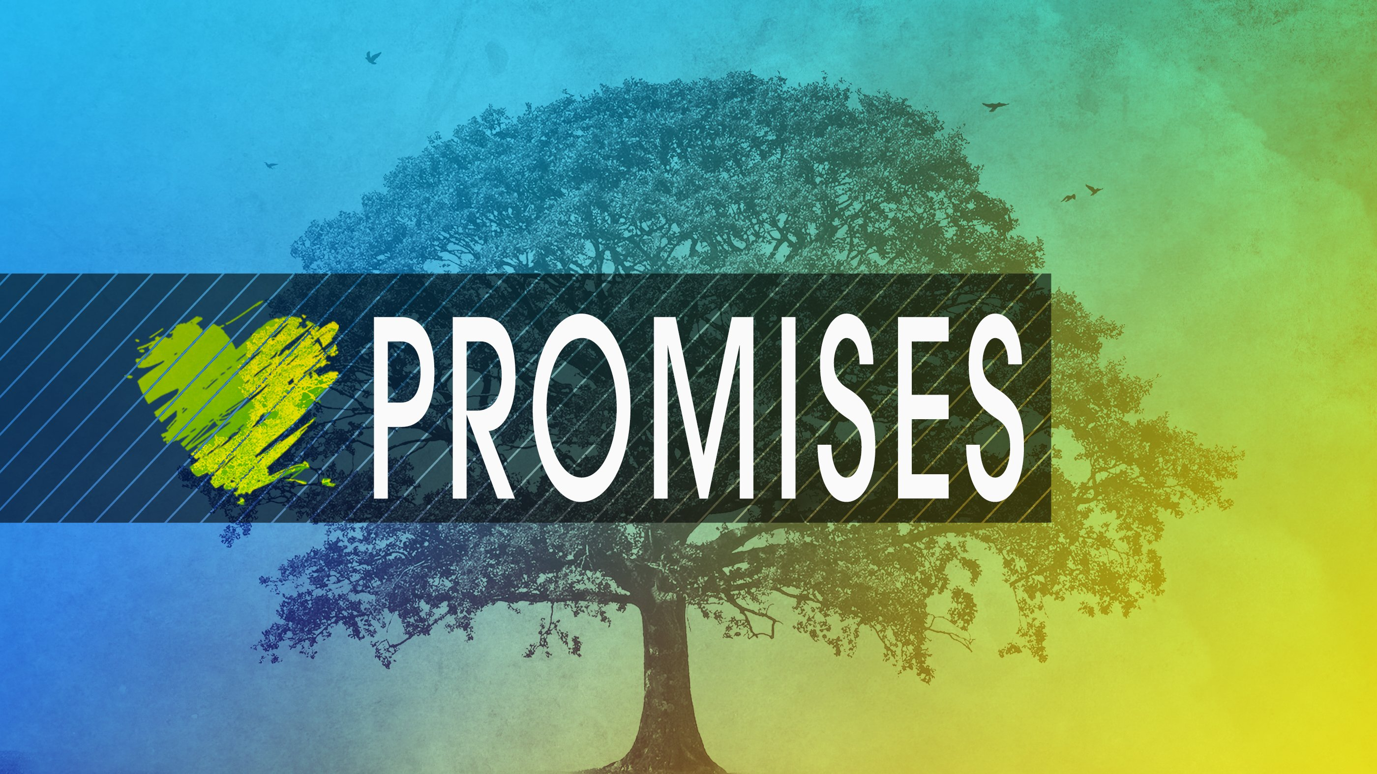 The Year of Promises. 2019 at Heartland Christian Center. #GodPromises