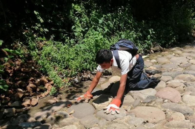 Adolescente con parálisis cerebral gatea kilómetros para llegar a la escuela