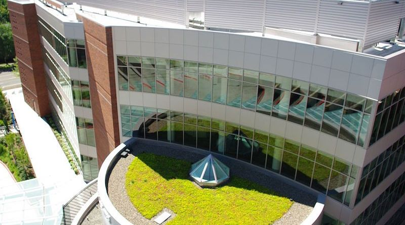 Green Roofs: Check the Pest Vital Signs