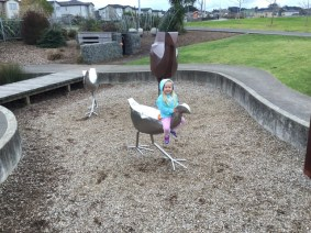 Riding the pukeko
