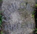 Cecil Davis Headstone