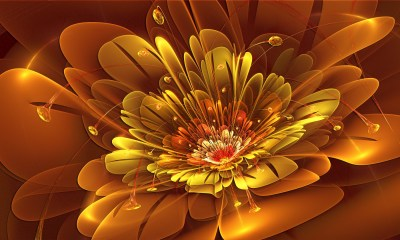 Abstract Flower Wallpapers Background