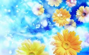 Flower Wallpaper For Pc