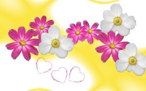 Flowers For Backgrounds Get