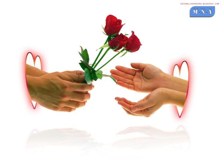 as love wallpaper
