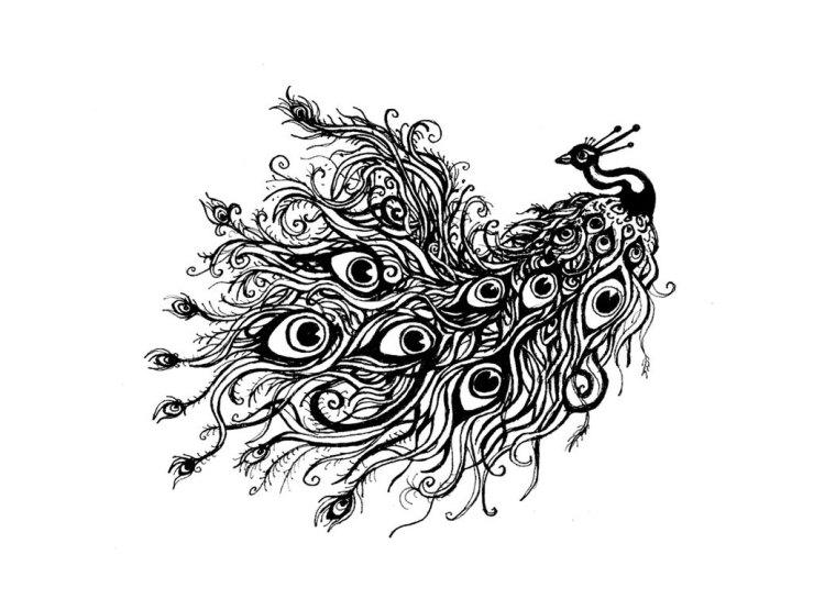 free hd designs peacock black tattoo wallpaper