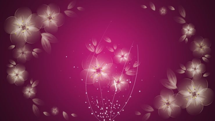 pink and white flower wallpaper