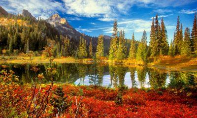 autumn pics wallpaper
