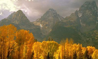 autumn pictures for desktop