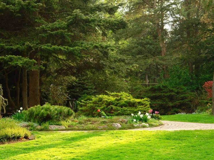 HD Spring garden wallpaper desktop 1024p