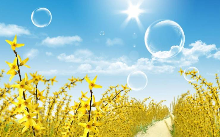 HD Wallpaper for summer android, Pc Desktop 1600p