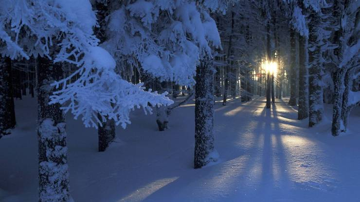 HD Winter pictures for wallpaper android, Pc Desktop 1920p