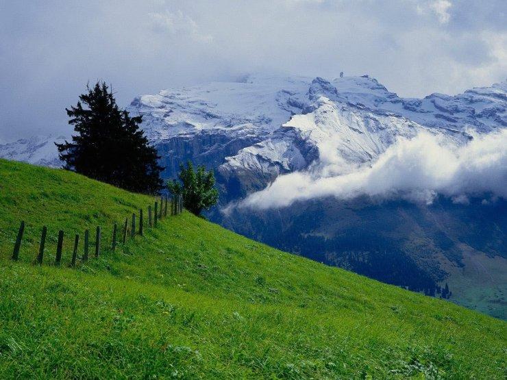 beauty of switzerland in summer