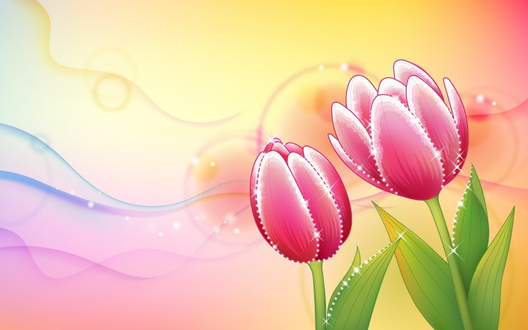 hd flower wallpapers free download