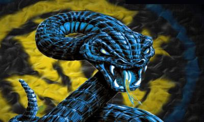 hd snake wallpaper