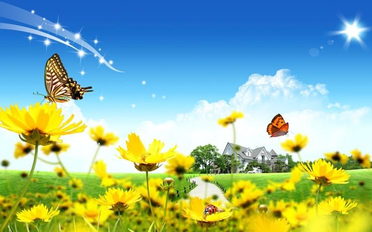 nature flower wallpaper download