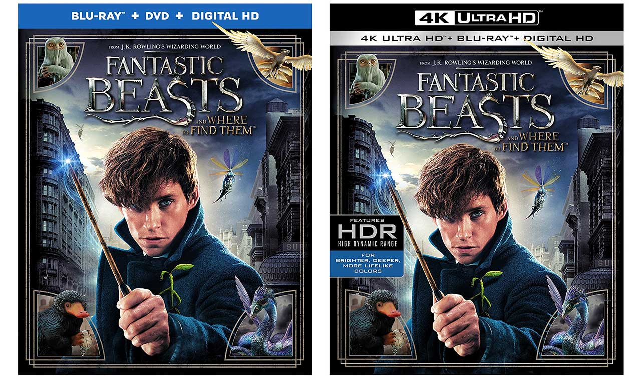 Fantastic Beasts And Where To Find Them Blu Ray Release