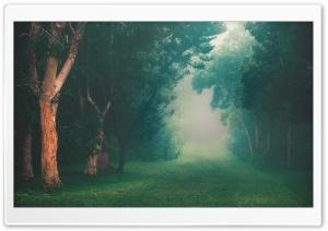 Wallpaperswidecom Nature Hd Desktop Wallpapers For 4k