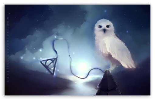 White Owl Painting 4K HD Desktop Wallpaper For 4K Ultra HD