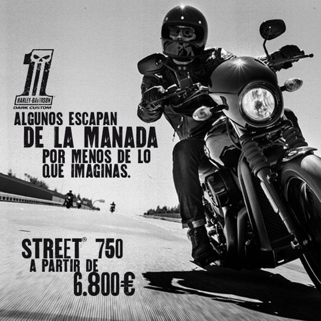 NUEVO PRECIO STREET 750