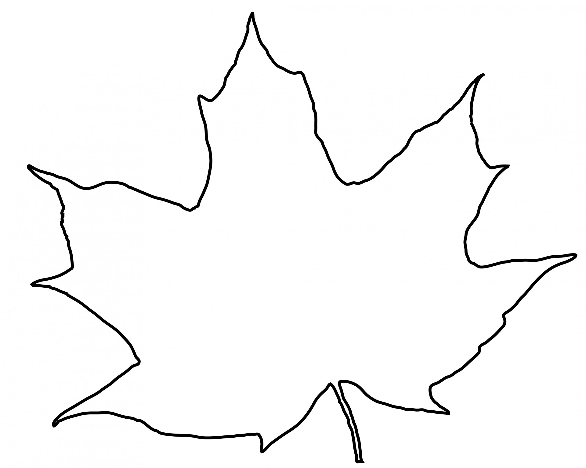 6 Leaf Outline Images