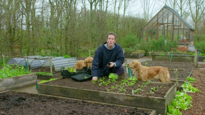 Gardeners' World episode 5 2017