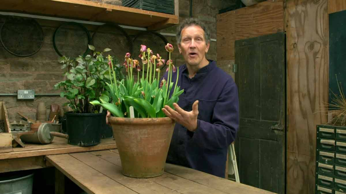 Gardeners' World 2021 Winter Specials episode 3
