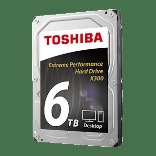 X300 6TB HDD