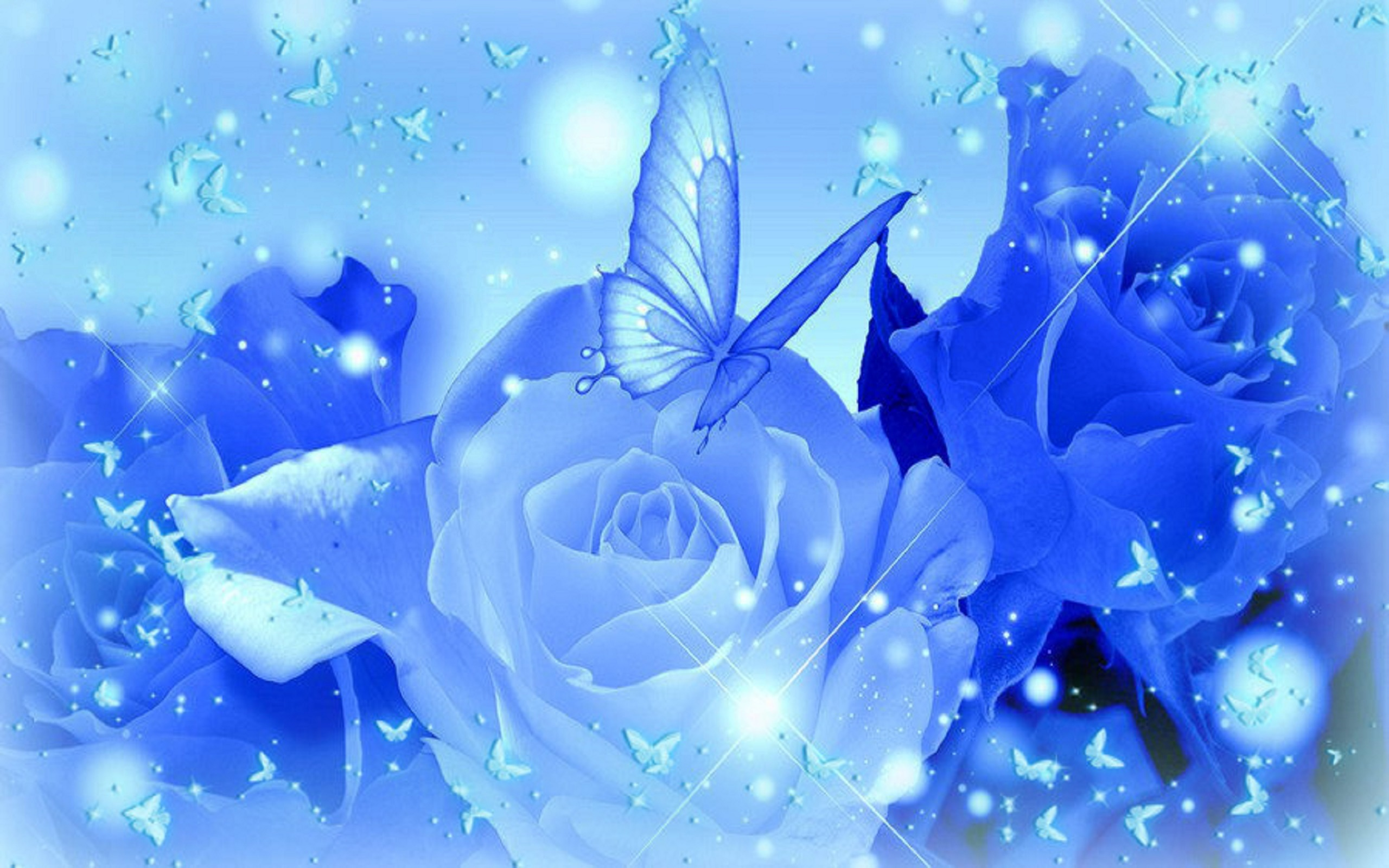 Cute Blue Roses Images