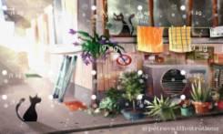 palm trees coast gulf inclination blue green hd 1920x1080