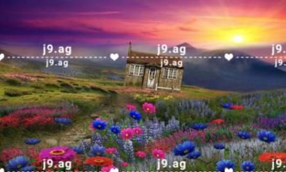 palm trees house coast thickets sand beach 1920x1080