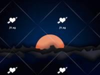 palm trees sand beach summer 1920x1080