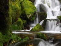 Android natural water falling wallpaper