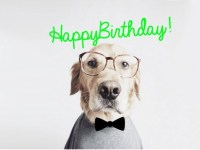 Happy-Birthday-Intellectual-dog-FB