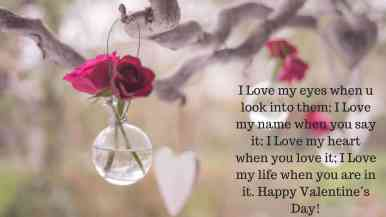 Happy Valentines Day Quotes Images 2