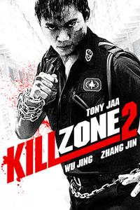 Kill Zone 2 Full Movie Download